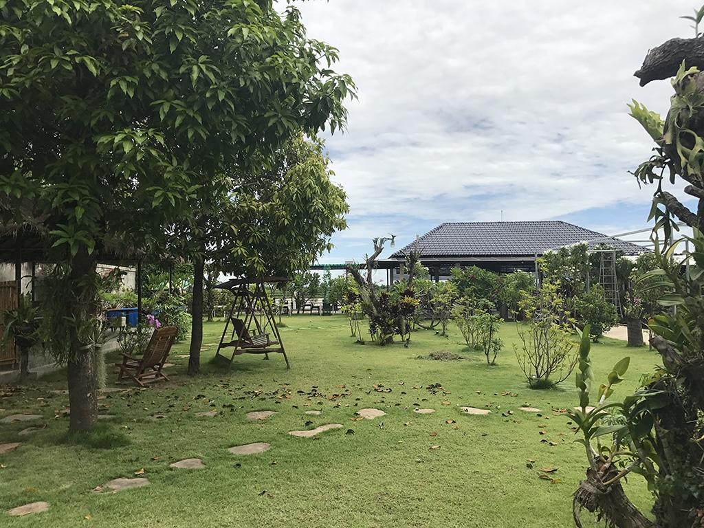 Au bonheur du m kong un havre de paix au large de phnom for Jardin du mekong homestay